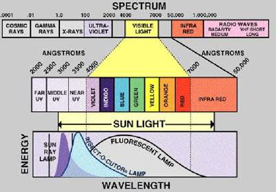 Grafico-UV